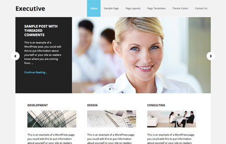 Executive Pro theme by StudioPress, available through 9 Planets LLC Web Design & Hosting