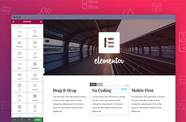 The Divi Builder plugin image